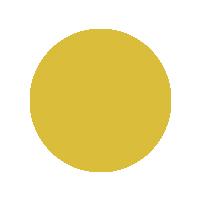 Yellow - 1026/8